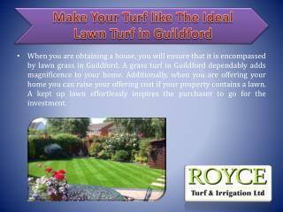 Make Your Turf like The Ideal Lawn Turf in Guildford