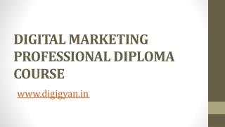 Digital Marketing Professional Diploma Course - Digigyan.in
