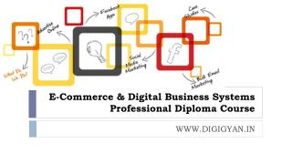 E-Commerce & Digital Business Systems Professional Diploma Course