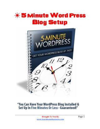 5 Minute WordPress Blog Setup For The Newbie