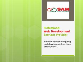 Dynamic website development solutions for your Business Promotion