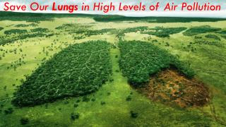 10 Points to Save Our Lungs in High Levels of Air Pollution - Dr. (Prof.) Arvind Kumar