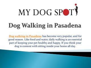 Dog Walking in Pasadena
