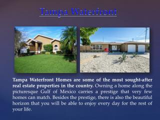 Tampa Waterfront homes for sale