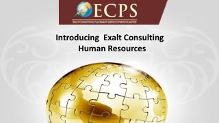 Introduction to Exalt Consulting