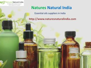 Natural essential oils suppliers at nature natural india