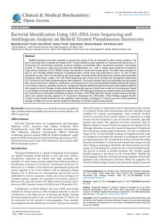 Antimicrobial Sensitivity Assay on Pseudomonas fluorescens