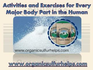 Activities and Exercises for Every Major Body Part in the Human