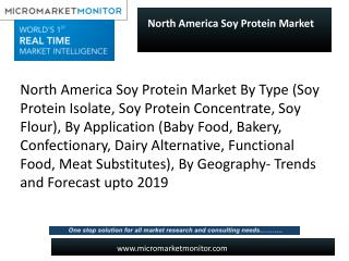 North America Soy Protein Market looking for great success in upcoming years