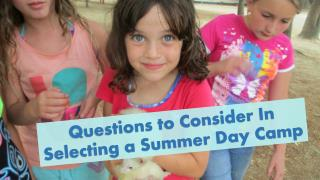 Questions To Consider In Selecting A Summer Day Camp