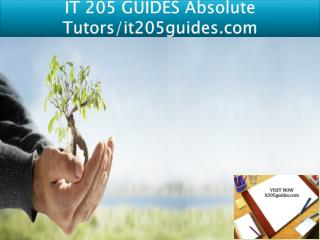 IT 205 GUIDES Absolute Tutors/it205guides.com