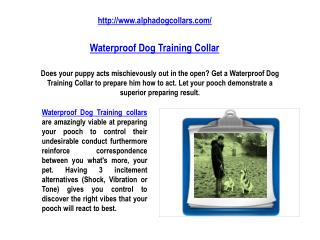 Waterproof Dog Training Collar