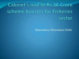 Fiinovation Welcomes Cabinet's nod to Rs 3K Crore Scheme Booster for Fisheries sector