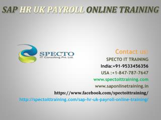 sap hr uk payroll online training in usa |online training on sap hr payroll in usa