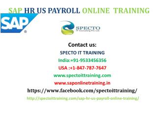 sap hr us payroll online training in usa | online training on sap hr us payroll in usa