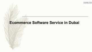 Ecommerce Software Service in Dubai