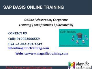 SAP BASIS ONLINE TRAINING IN DUBAI|MALAYSIA