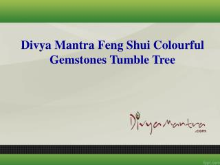 Divya Mantra  Feng Shui Colourful Gemstones Tumble Tree