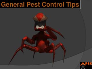 General Pest Control Tips