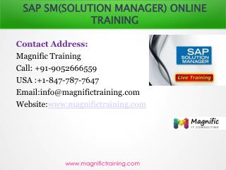 SAP SM(SOLUTION MANAGER) ONLINE TRAINING IN CANADA|AUSTRALIA