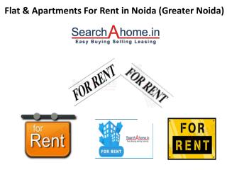 Flat and Apartments for Rent in Noida (Greater Noida & Gurgaon)