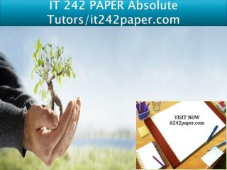 IT 242 PAPER Absolute Tutors/it242paper.com