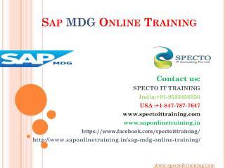 sap mdg online training in uk,canada