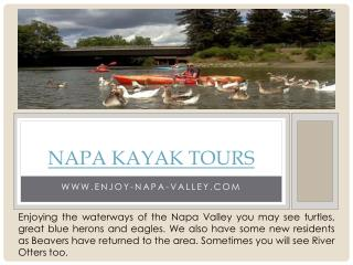 Napa Valley Kayak