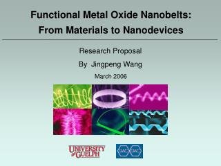 Functional Metal Oxide Nanobelts:  From Materials to Nanodevices