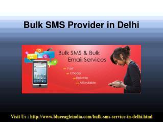 Bulk SMS Provider in Delhi