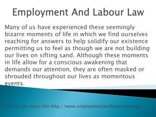 www.employmentandlabourlaw.org