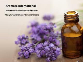 Organic essential oil suppliers and manufacturers at aromaaz international!