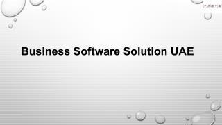 Business Software Solution UAE