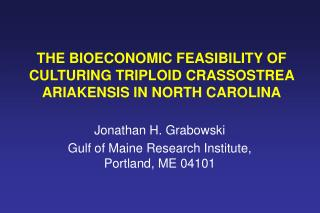 THE BIOECONOMIC FEASIBILITY OF CULTURING TRIPLOID CRASSOSTREA ARIAKENSIS IN NORTH CAROLINA