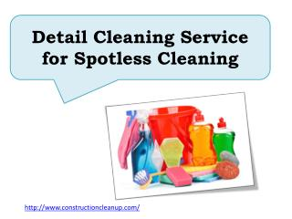 Detail Cleaning Service for Spotless Cleaning