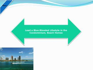 Lead a Blue-Blooded Lifestyle in the Condominium, Beach Homes