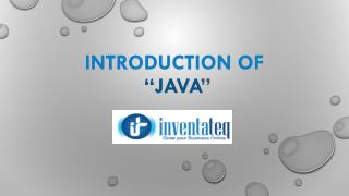 Java Technology Introduction by InventaTeq