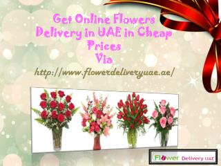 Get Online Flowers Delivery in UAE in Cheap Prices!