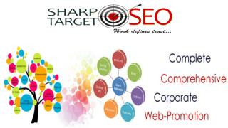 Hire SEO Experts for Boost your Business websites