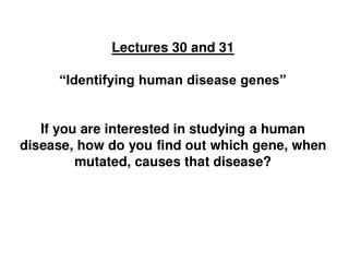 Lectures 30 and 31   Identifying human disease genes    If you are interested in studying a human disease, how do you fi