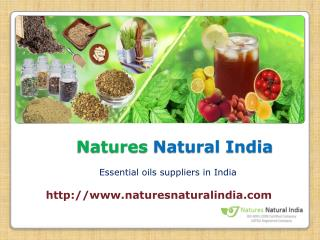 Pure and natural oils at naturenaturalindia.com