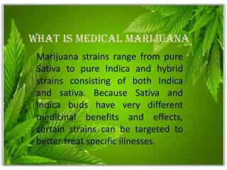 Preffect Medical Marijuana Doctors