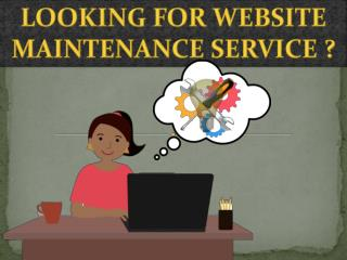Website Maintenance Services – Saving Sanctity