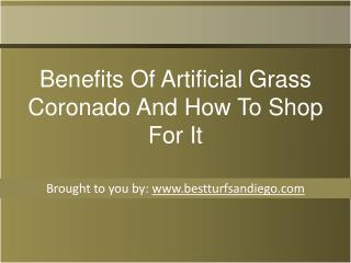 Benefits Of Artificial Grass Coronado And How To Shop For It