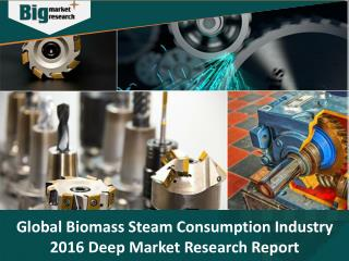 Global Biomass Steam Boiler Consumption Industry 2016 Deep Market Research Report - Big Market Research