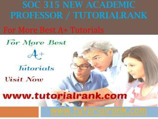 SOC 315 New Academic professor - tutorialrank