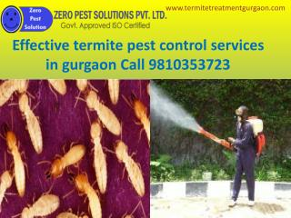Effective termite pest control services in gurgaon Call 9810353723