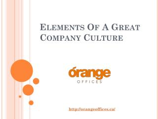 Elements Of A Great Company Culture