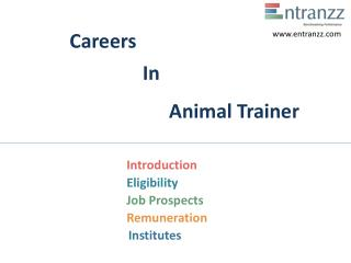 Careers In Animal Trainer