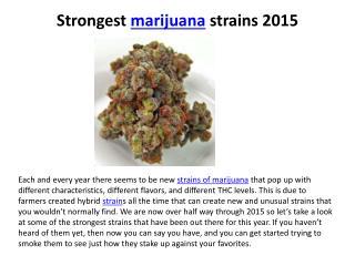 Strongest marijuana strains 2015